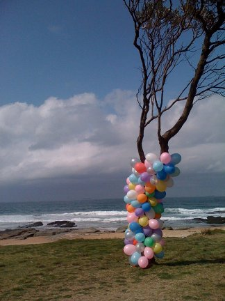 Coloured balloons around a tree trunk