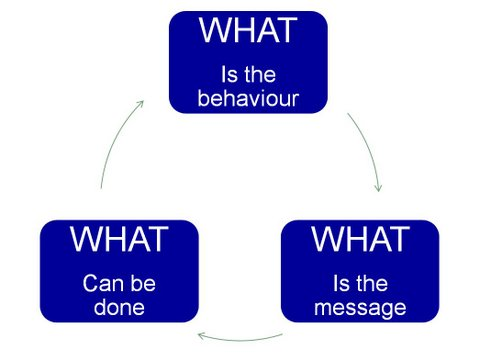 Challenging Behaviour after Brain Injury - The What Model-Diagram with 3 blue boxes