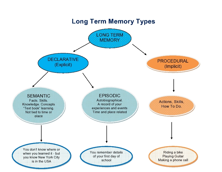Long term memory Chart showing types of Long term memory storage