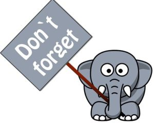 "Short term Memory to Long term Memory - cartoon elephant holding sign ""Don't Forget"""