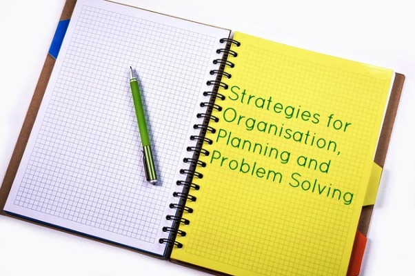 Strategies for Organisation Planning and Problem Solving