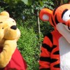 Winnie the Pooh teach us about brain injury